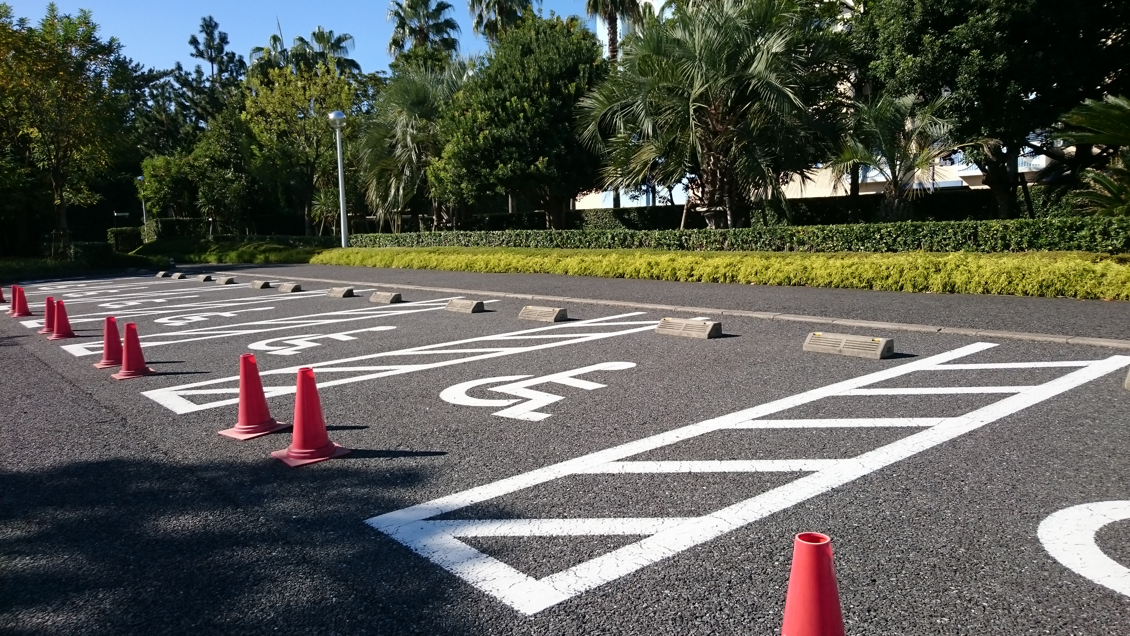 身障者用駐車場【車いすマーク駐車場は誰の場所?】実状編01